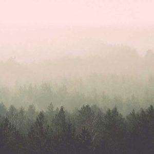 Visibilidad y Clima Actual