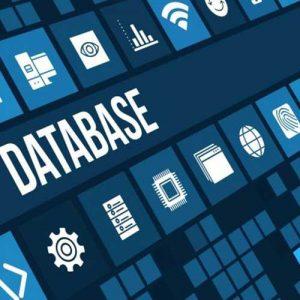 Servicios Digitales y de Datos